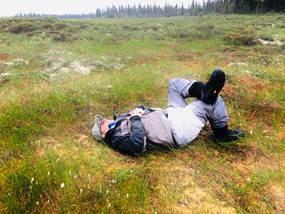 alaska ground