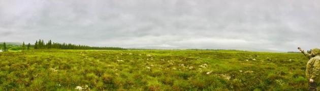 alaska panoramic